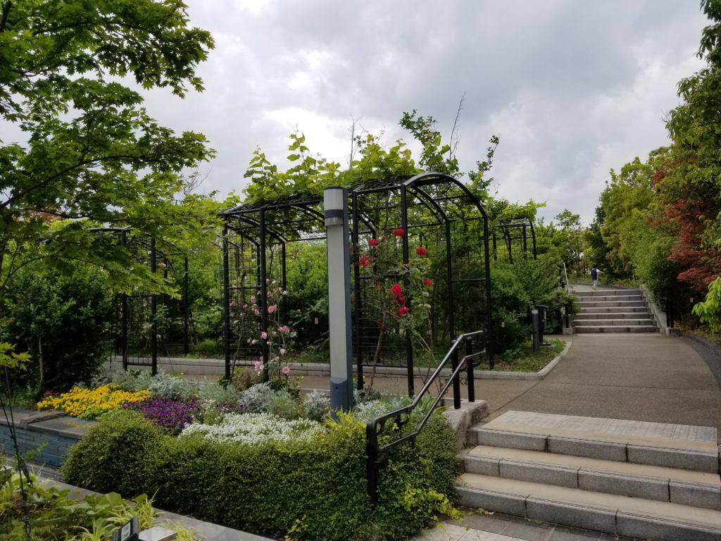 目黒天空庭園のガーデニング