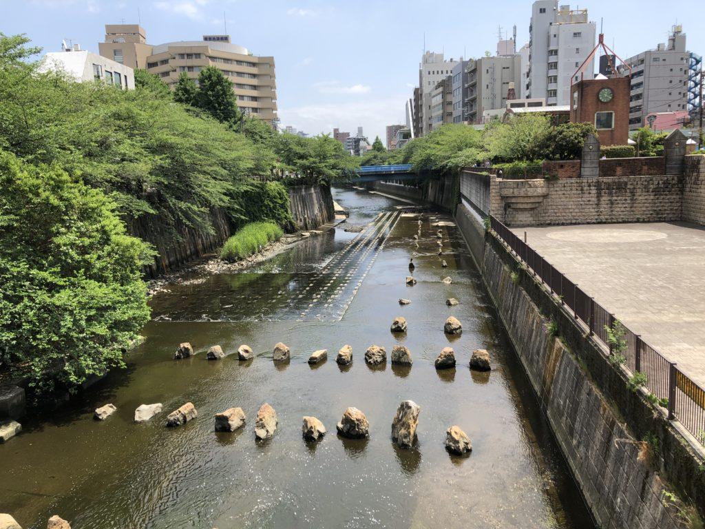船入場裏の目黒川