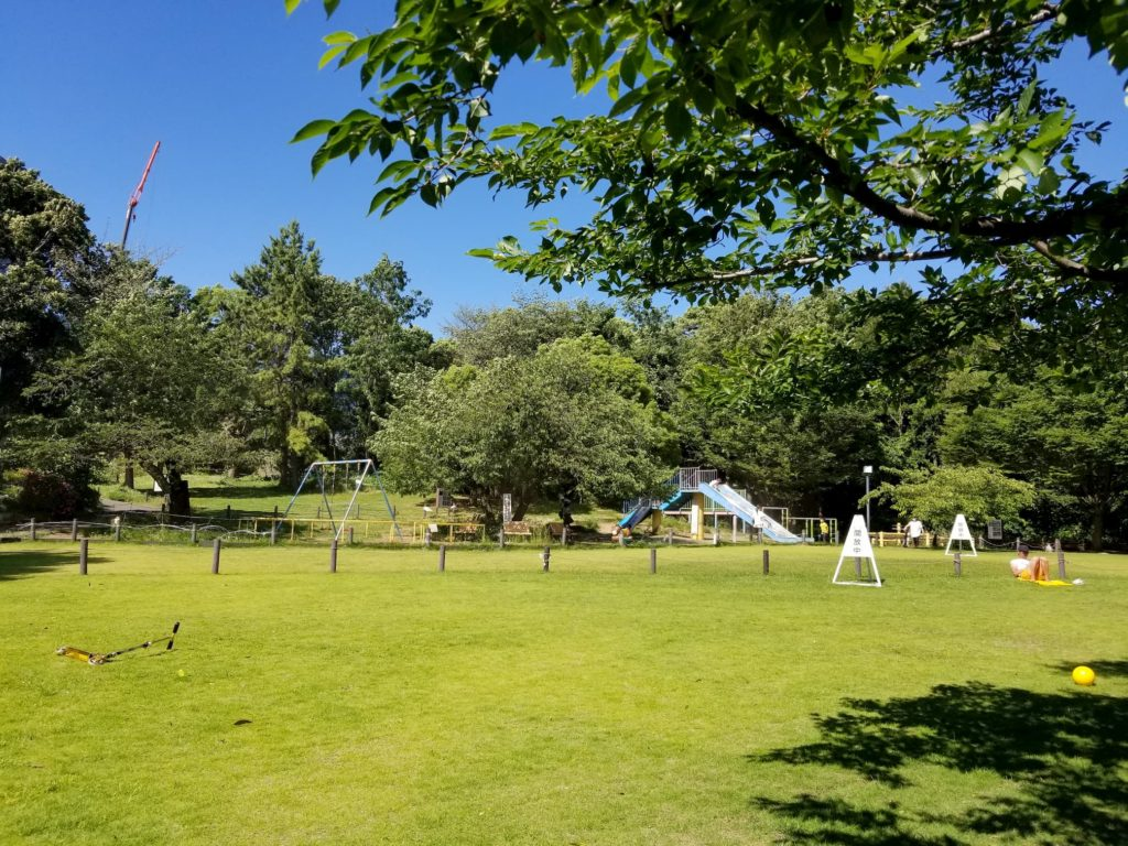 菅刈公園の広場と木陰