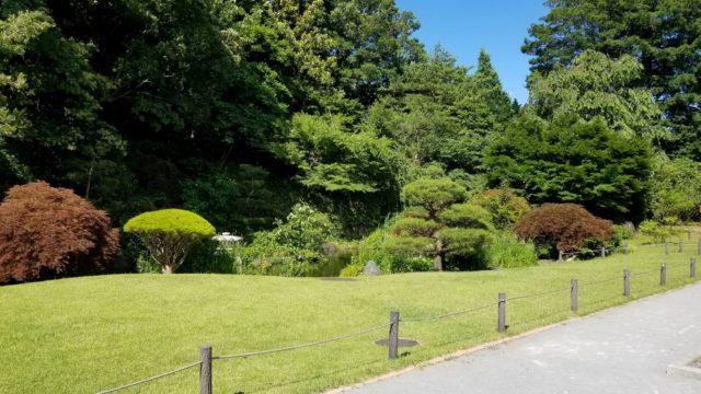 菅刈公園の和館の庭園